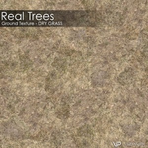 Real Trees Ground Texture - Dry Grass