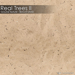 Real Trees Ground Texture - Beach Sand