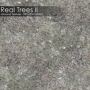 Real Trees Ground Texture - Frozen Grass
