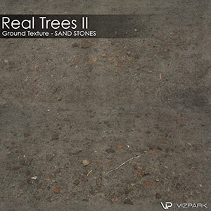Real Trees Ground Texture - Sand Stones